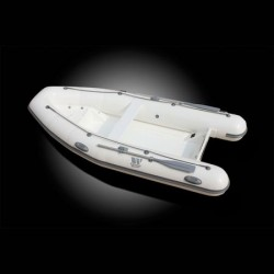 РИБ Лодка Tiger Marine TENDER 310-2