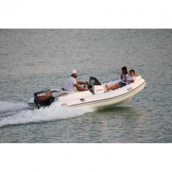 РИБ Лодка Tiger marine PROTENDER 400-6