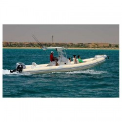 РИБ Лодка Tiger marine OPEN 850-4
